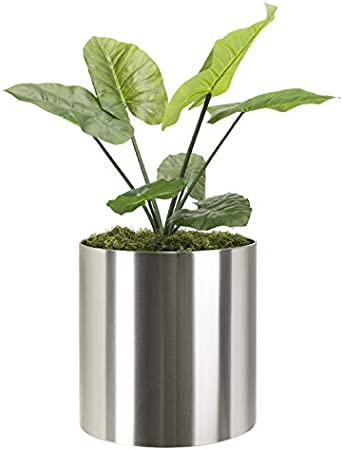 Amazon Com Modern Knox Brushed Stainless Steel Planter Best