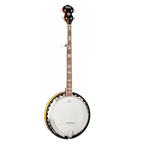 Washburn B10 5-String Banjo, Sunburst Gloss Finish