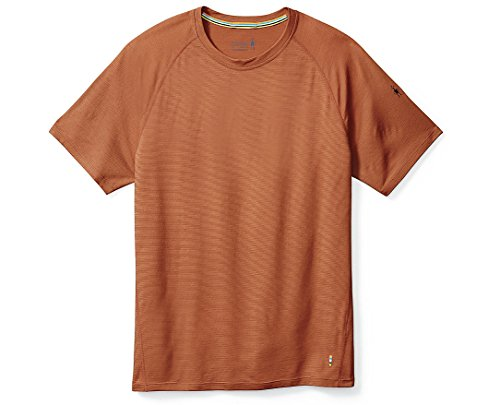 SmartWool Men's Merino 150 Baselayer Pattern Short Sleeve (Cardamom) Large by SmartWool