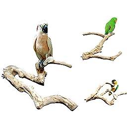 Java Wood Multi-Branch Perch
