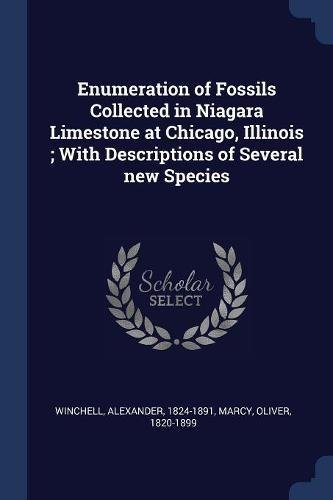 Download Enumeration of Fossils Collected in Niagara Limestone at Chicago, Illinois ; With Descriptions of Several new Species PDF