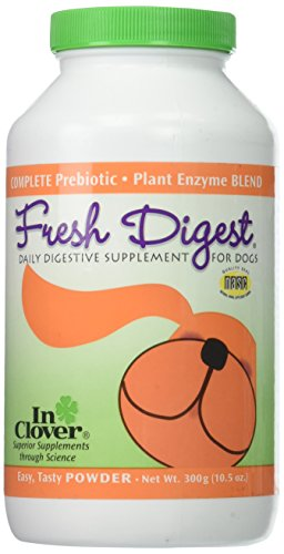 In Clover Fresh Digest Daily Intestinal Aid for Dogs, 300 g
