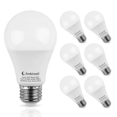 A19 LED Bulb 100Watts Equivalent, Ambimall Medium Screw Base E26 LED Globe Light Bulbs, Warm White 2700k 1200Lumens Non-Dimmable A60 Appliance Bulb for Home Lighting Decorative(Pack of 6) (Lights Base Medium A19)