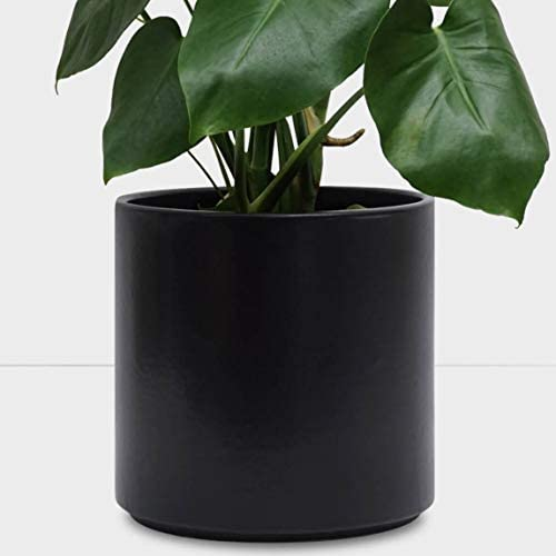 PEACH PEBBLE Indoor Plant Pot 12.5 , 10.5 , 8.5 , 6.5 – Black Terracotta Planter, Perfect for House Plants – Available in White, Black, Bronze, and Blush 8.5 , Black