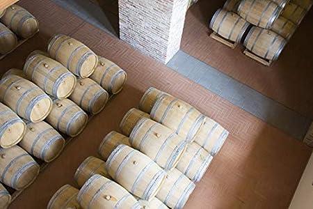 La Spinetta Barbera D'Asti Cà Di Pian, Vino Tinto, 75 cl - 750 ml