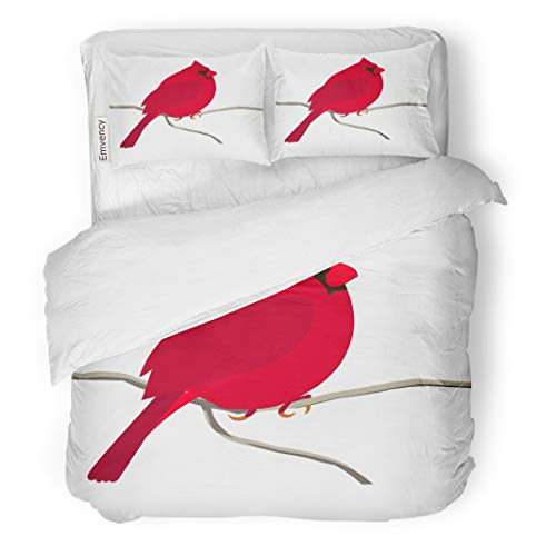Semtomn Decor Duvet Cover Set Twin Size Animal Colorful Red Cardinal Bird for Coloring Page 3 Piece Brushed Microfiber Fabric Print Bedding Set Cover ()