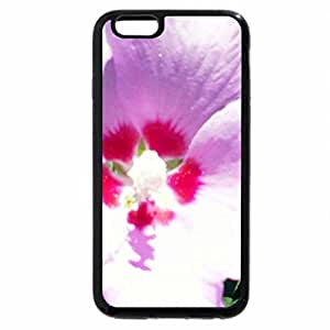 iPhone 6S / iPhone 6 Case (Black) pretty purple and pink flower