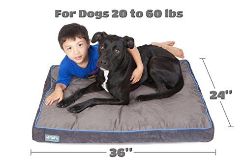 First-Quality 5'' Thick Orthopedic Dog Bed | Pure Premium Memory Foam | Ideal for Aging Dogs | Waterproof | Helps Ease Pain of Arthritis & Hip Dysplasia | 180 GSM Removable Washable Cover by Better World Pets (Image #4)