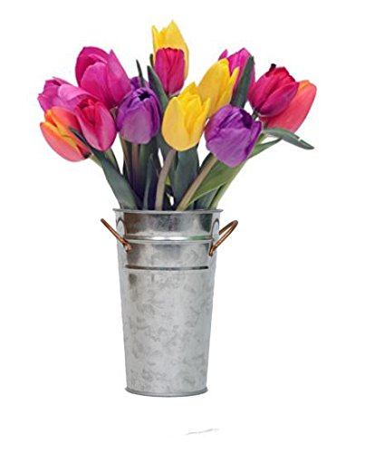 Stargazer Barn - Bright and Cheerful Multi-Colored Tulips with Vase - Sprinkles Bouquet - Vase Included (Birthday Bouquet Spring)