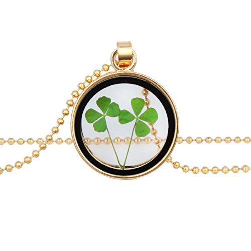 Four Leaf Clover Wishing Bottle Natural Plant Specimens Dried Flowers Sweater Chain Necklace