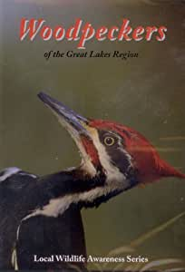Woodpeckers of the Great Lakes Region (Local Wildlife Awareness Series)
