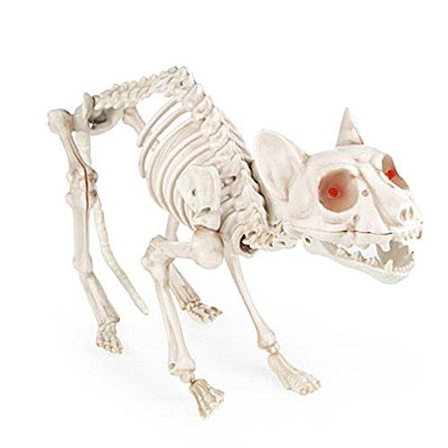 (Animated Light Up Skeleton Cat)