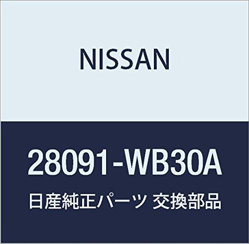 NISSAN (日産) 純正部品 デイスプレー ユニツト AV エルグランド 品番28091-WB30A B01LWMXZ7L