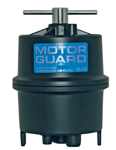 Motor Guard M-30 1/4 NPT Submicronic Compressed Air - Air Particulate Filter Connection