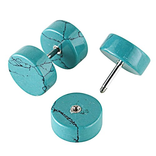 4c0f30101c44c JewelrieShop Stainless Steel Fake Cheater Illusion Tunnel Ear Plug Screw  Stud Earrings