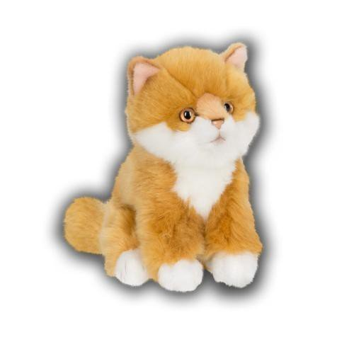 ACP B01CRLUS56 cm - 28179018長毛 - 生姜猫座る15 生姜猫座る15 cm B01CRLUS56, 常呂郡:30cf6ac0 --- integralved.hu