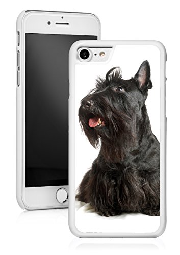 (For Apple iPhone Hard Back Case Cover Black Scottish Terrier Puppy Dog (White for iPhone 8 Plus))