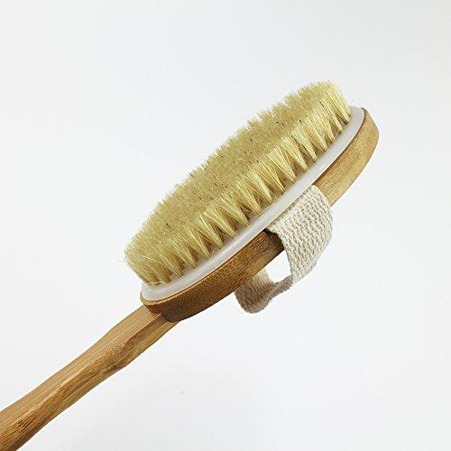 KaLaiXing Bath brush. Made from premium natural boar bris...