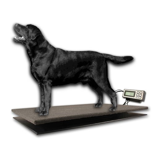 ZIEIS | 150 Lb. Capacity | Large Pet Series - Digital Dog Scale | CP150-3020-SURGE | 30'' X 20'' BigTop Cozy Pawz Platform | Adjustable LCD Bracket | Surge Protector | 0.1 Lb. Accuracy by ZIEIS