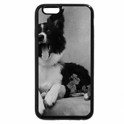 iPhone 6S Plus Case, iPhone 6 Plus Case (Black & White) - Dog.