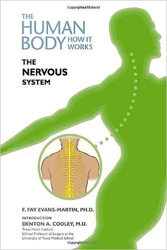 Neuronal development