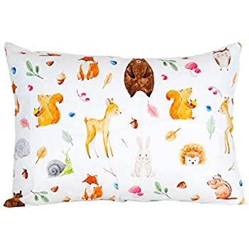 100% Organic Toddler Pillowcase by ADDISON BELLE - Fits Both 13