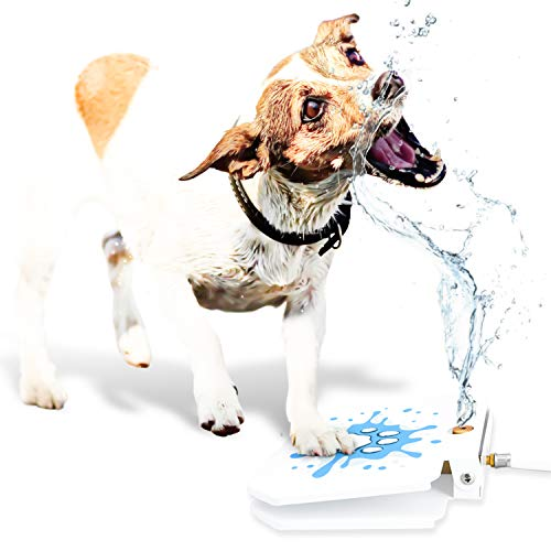GoodBoy Water Fountain for Dogs - Interactive Paw Pedal Design Stimulates Pets and Keeps Them Cool - New Durable Leak-Proof Dispenser - Keeps Furry Friends Healthy Happy and - Dog Training Waterer