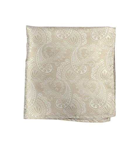 The Tie Bar 100% Woven Silk Cream, Ivory and Champagne Paisley Pocket Square