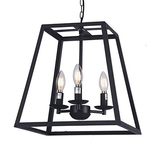 Amazon.com: Raekor - Lámpara de techo de 14 pulgadas, marco ...