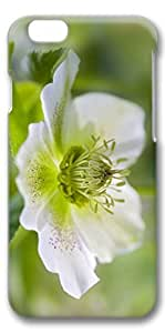 iPhone 6 Case, Custom Design Covers for iPhone 6 3D PC Case - One White Flower