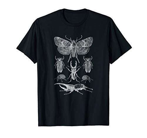 Insects Collection T-Shirt Butterfly Stag Beetle Bugs Tee -