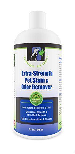 Extra Strength Pet Stain and Odor Remover; 32 Ounces For Sale