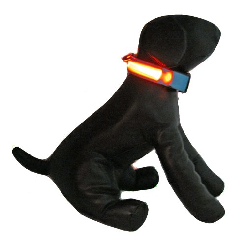 Alfie Pet – Blauw Flashing Pet Safety Collar – Collar Color: Baby Blue, LED Light Color: Orange, Size: XL, My Pet Supplies