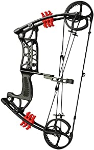 Archery Hunting Compound Bow Kit Dual-Purpose Bow 30-55lbs Adjustable Catapult Steel Ball Compound Bows for Ou