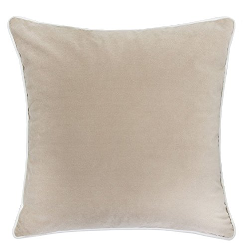 Velvet Throw Silk (Homey Cozy Plush Velvet Throw Pillow Cover,Beige Series Taupe Beige Soft Fuzzy Cozy Warm Slik Decorative Square Couch Cushion Pillow Case 20 x 20 Inch, Cover Only)