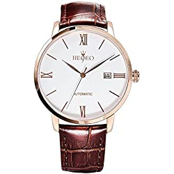 HEOJEO Urban Newmen Wristwatch Automatic Mechanical watches For Men-Brown Leather Stainless Steel Plated Yellow Gold watch-Analog Swiss Movement-White Dial Date Gentlemen Designer Watch HG1205L7A5
