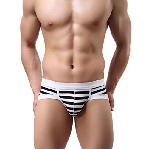 LtrottedJ Mens Sexy Stripe Cotton Underwear shorts men boxers underpants Soft Briefs (A, M)]()