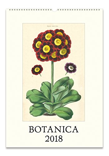 Cavallini Papers 2018 Botanica Wall ()