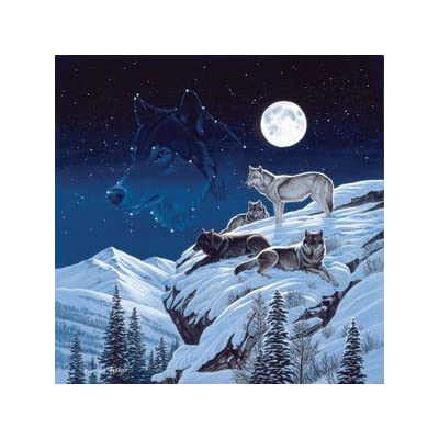 Cynthie Fisher Moonlight Sentinel Jigsaw Puzzle 500pc By Sunsout