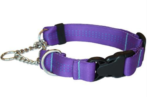 Canine Equipment Technika 1-Inch Quick Release Martingale Dog Collar, X-Large, Purple