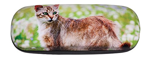 Hard Eyeglass Case Adorned With Photo Green-Eyed Pretty Kitty In Flowery - Eyeglasses Pretty