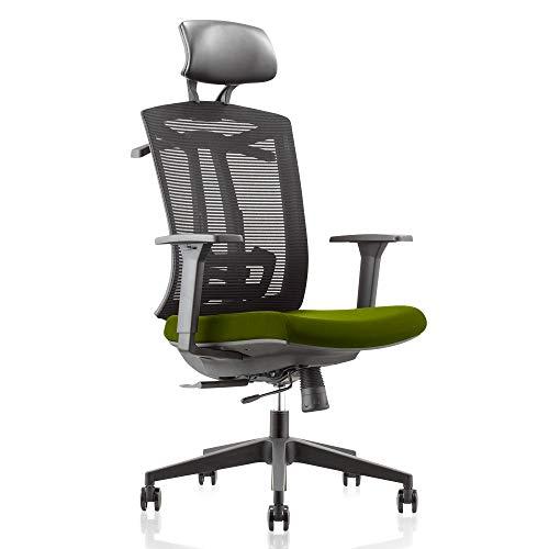 GAOAG 2019 New Mesh Office Chair with Hanger Ergonomic High Back Comfortable Lumbar Support Desk Chair Armrest Headrest Cushion Adjustable Black Green (Best Gaming Chair 2019)