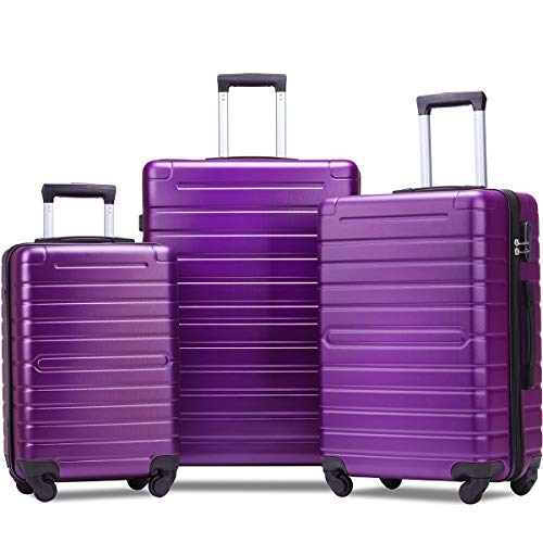 Flieks Luggage Set 3 Piece Light Weight Hardside Spinner Suitcase (purple)