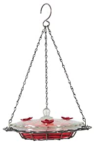 Birdscapes 224 Oasis 8-Ounce Glass Top Hummingbird Feeder