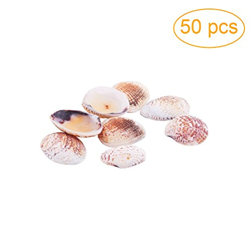 Supvox 50pcs 2-3cm Shell Pendant Shell Charm Seashell Scallop Seashells Clam Shell Dyed Beads with Holes for Craft - Shell Pendant Scallop