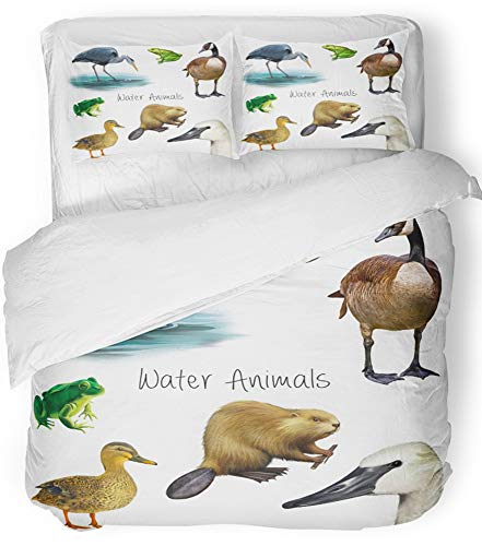 Emvency 3 Piece Duvet Cover Set Breathable Brushed Microfiber Fabric Water Animals Beaver Mallard Duck Canada Goose Frog Toad Head The Swan Crane Bedding Set with 2 Pillow Covers Twin Size
