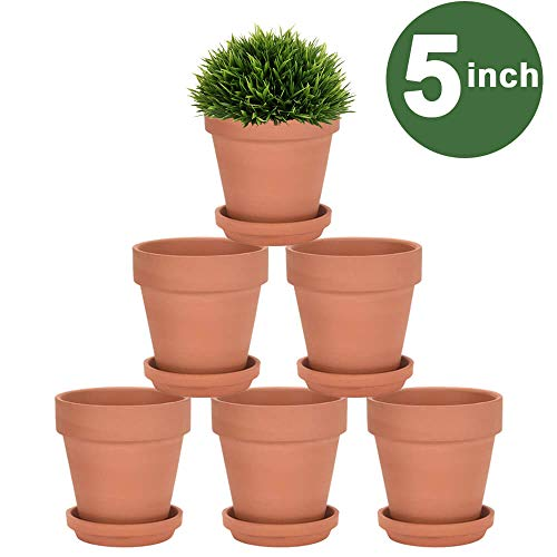 5 Inch Terra Cotta Pots with Saucer - 6 Pack Clay Flower Pots with Drainage, Great for Plants, Crafts, Wedding Favor (5 inch) (5 Flower Pot)