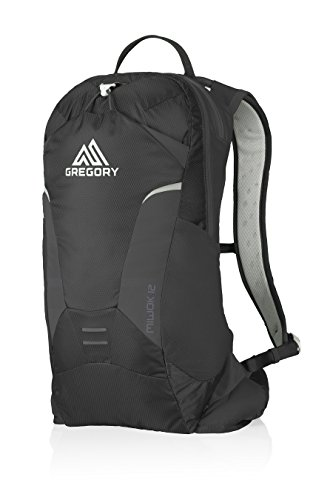 Gregory Miwok Daypack - 4