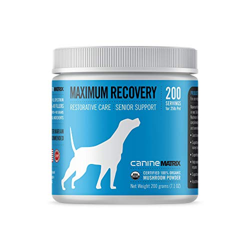Canine Matrix Organic Mushroom Supplement for Dogs, MRM Recovery, 200 Grams