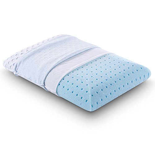 (Comfort & Relax Ventilated Memory Foam Bed Pillow with AirCell Technology, Standard, 1-Pack)